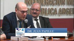 La visión, misión y aporte de los jueces ante la conflictividad en Salud -Dr. Juan Papillú